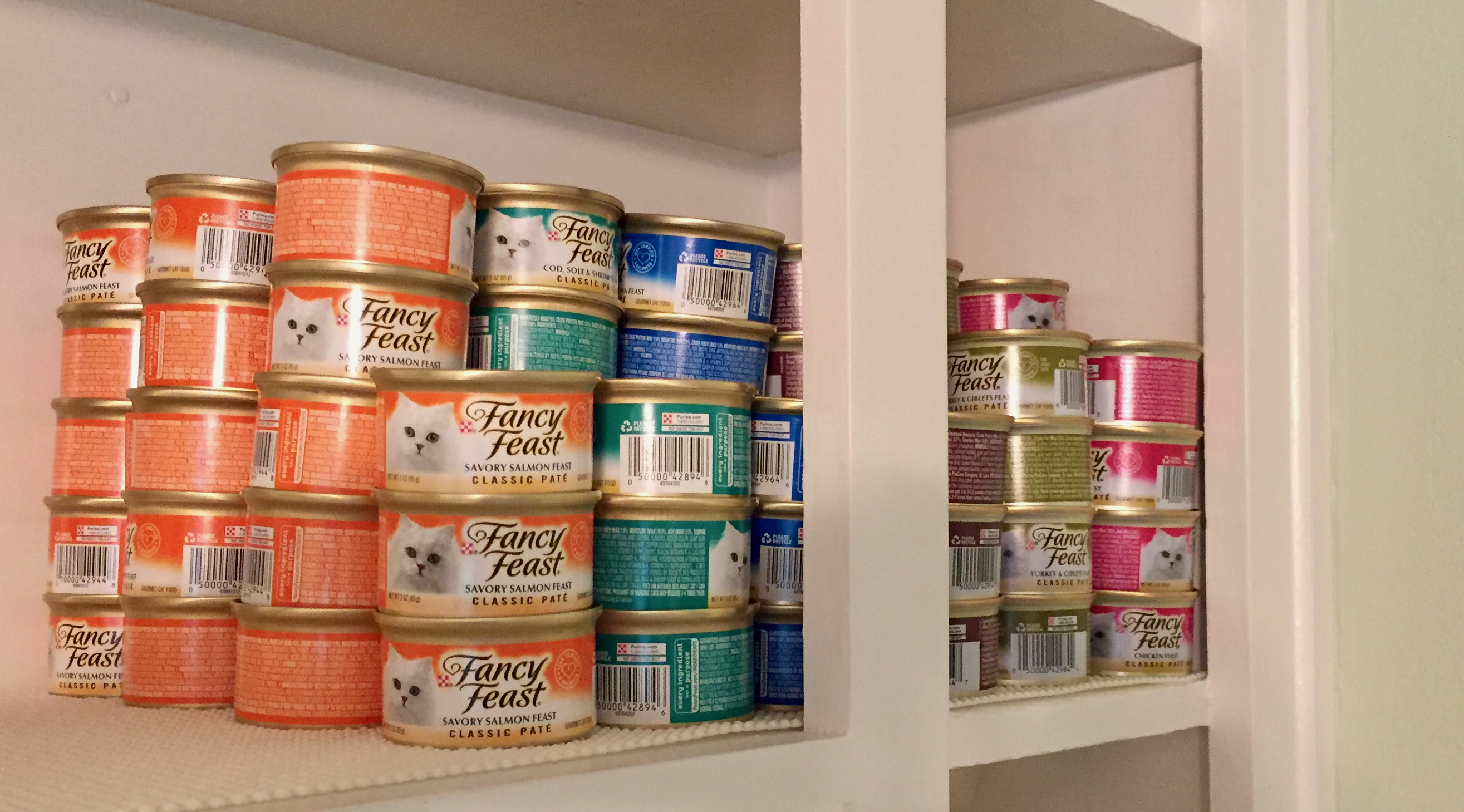 Cans of cat food.