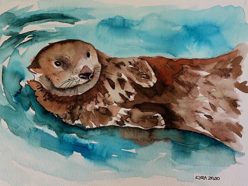 Otter in watercolor by Kyra Mills